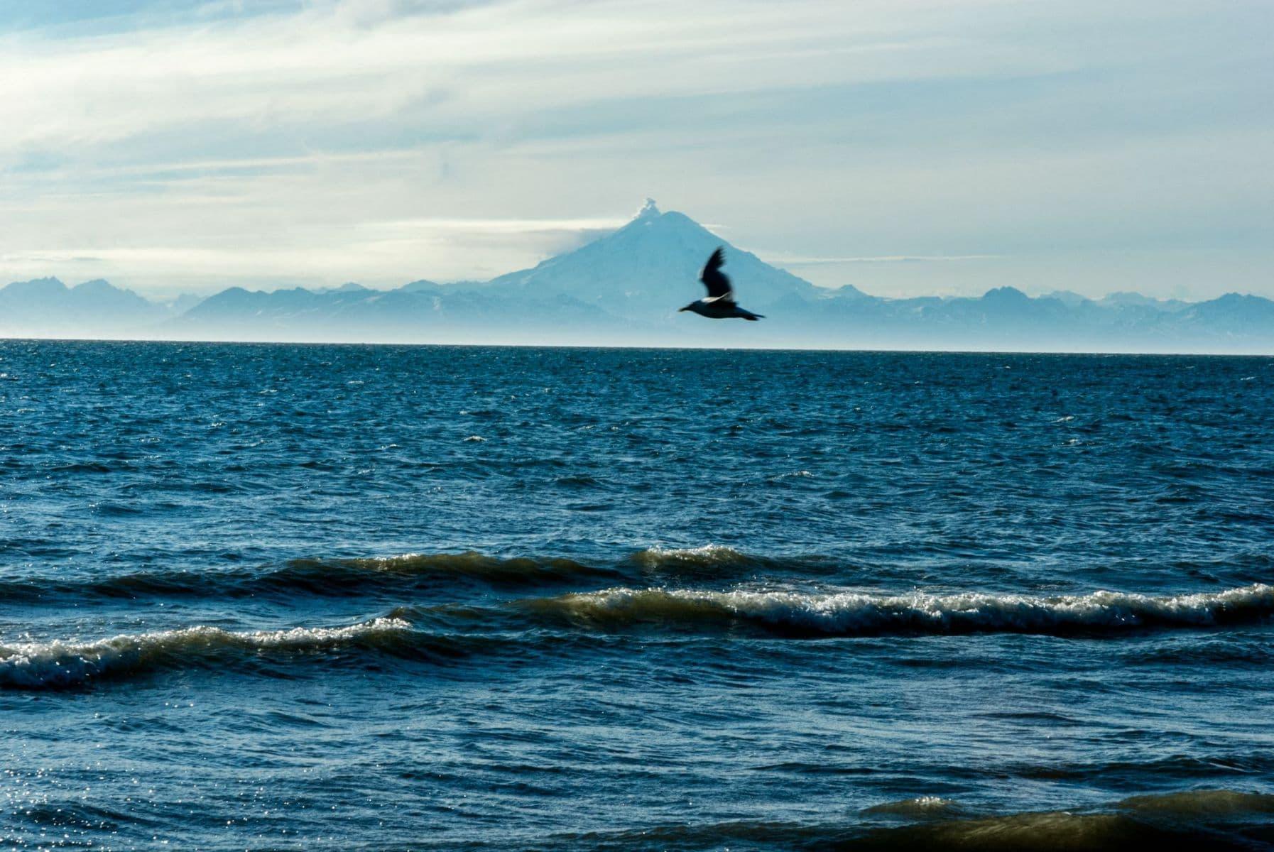 MichelAycaguer-Alaska bleu gris vert-2010-12