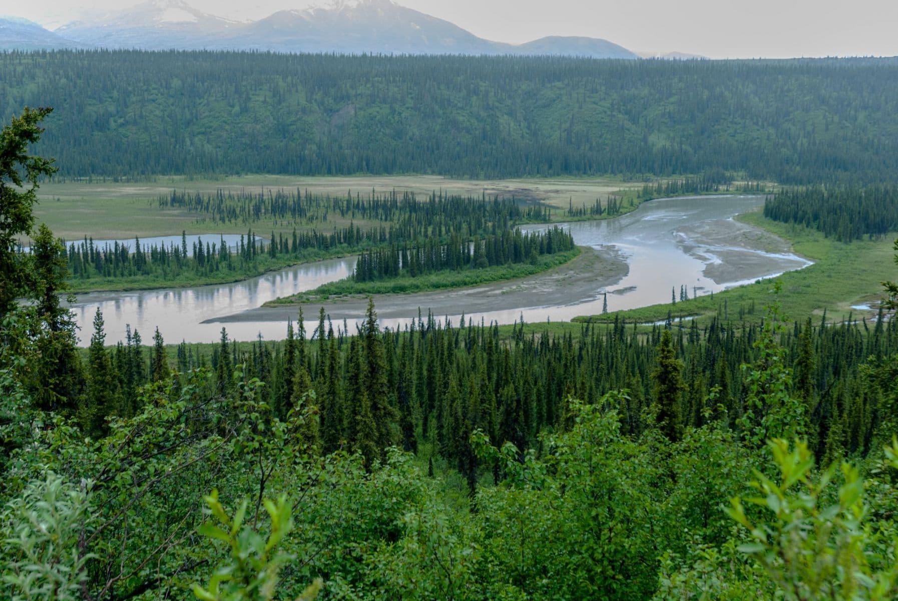 MichelAycaguer-Alaska bleu gris vert-2010-27