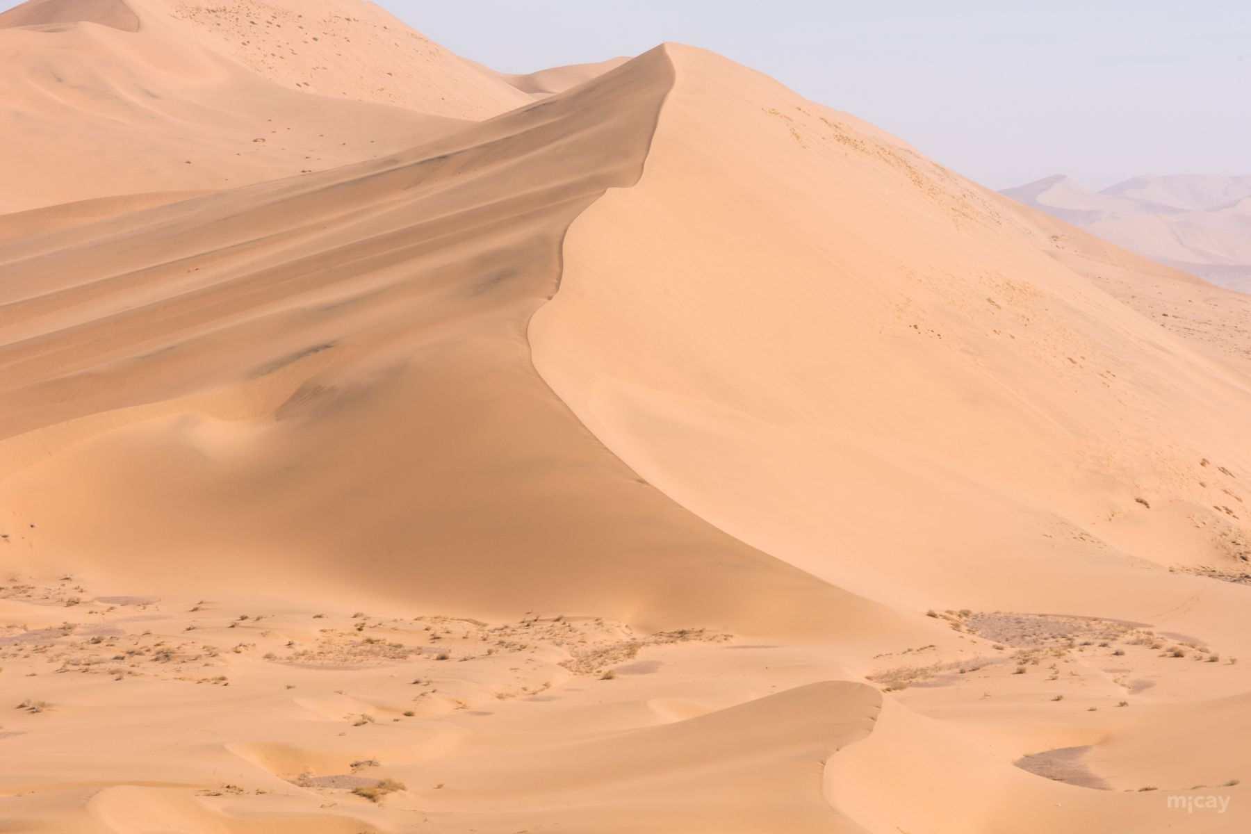 MichelAycaguer-Chine-Desert-BadainJaran-Dunes-Chameaux-14
