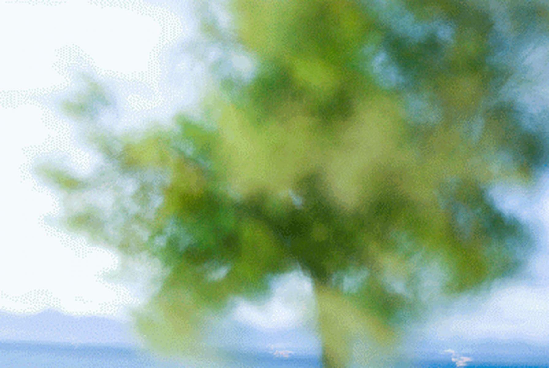 MichelAycaguer-Expo-28OctobreParis-2010-tamaris-DrapRouge-7