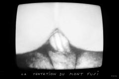 1_MichelAycaguer-LaTentationDuMontFuji-nu-tentation