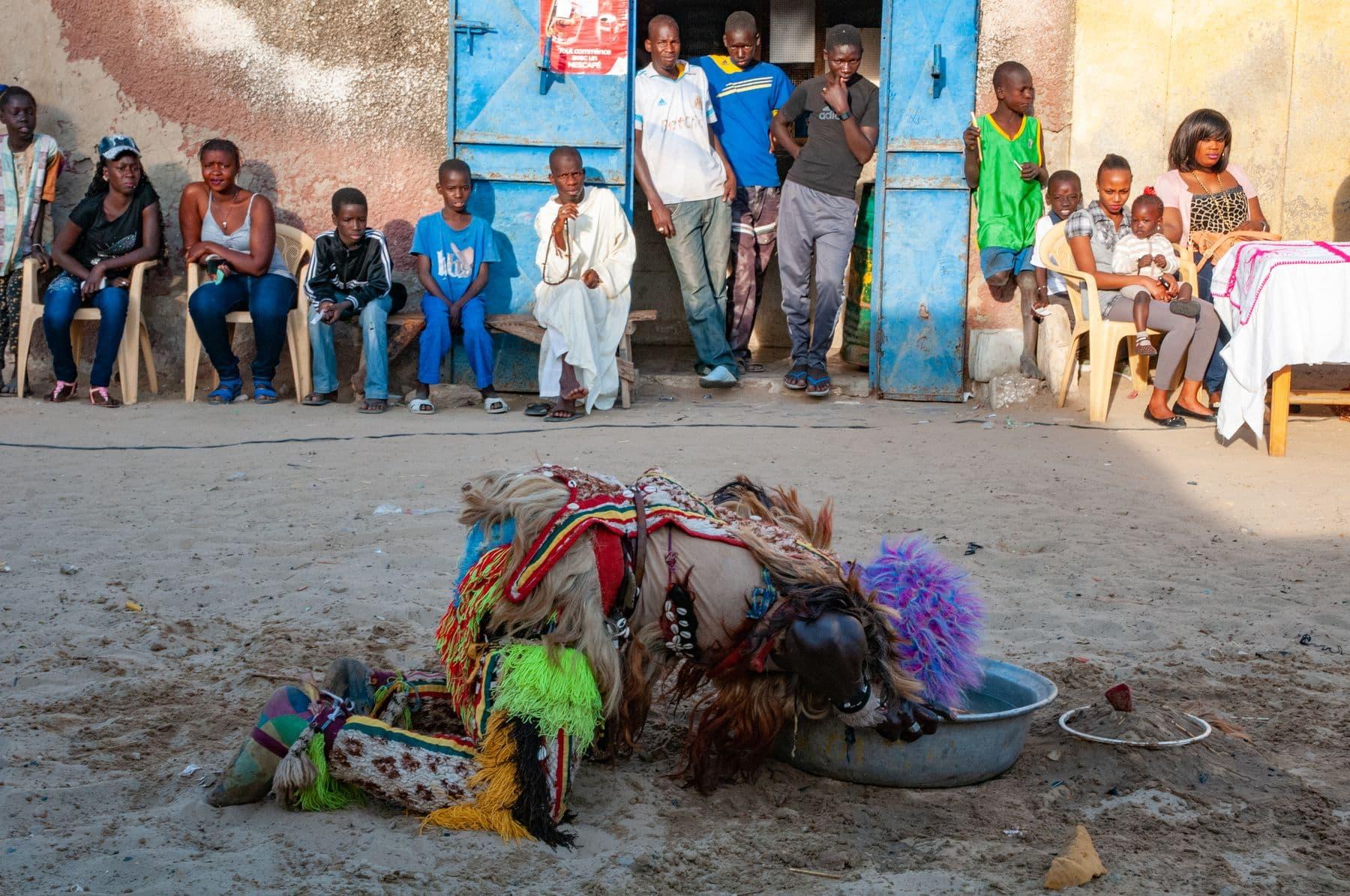MichelAycaguer-LeSimb-LeFauxLion-SaintLouis-Senegal-50