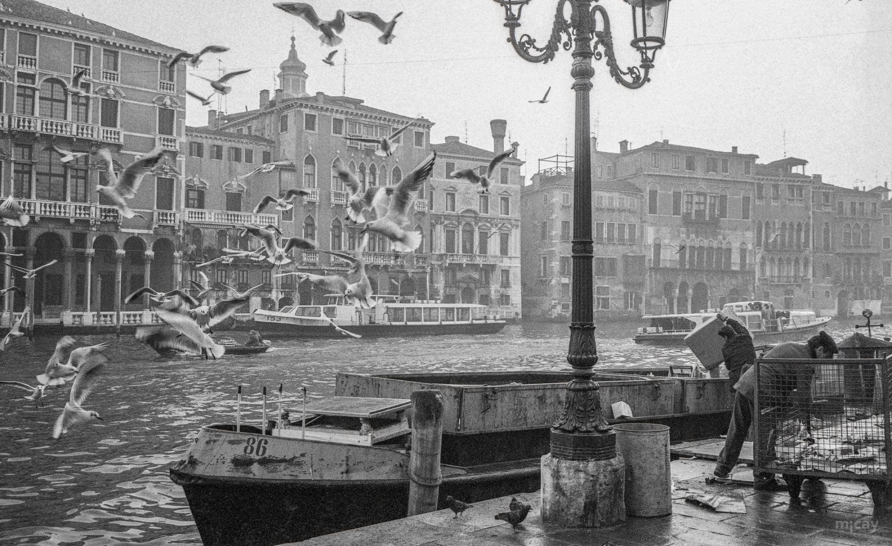 MichelAycaguer-Venise-lesVenitiens-en1980-5